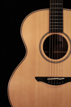 Avalon Guitars Pioneer A2-20 Model