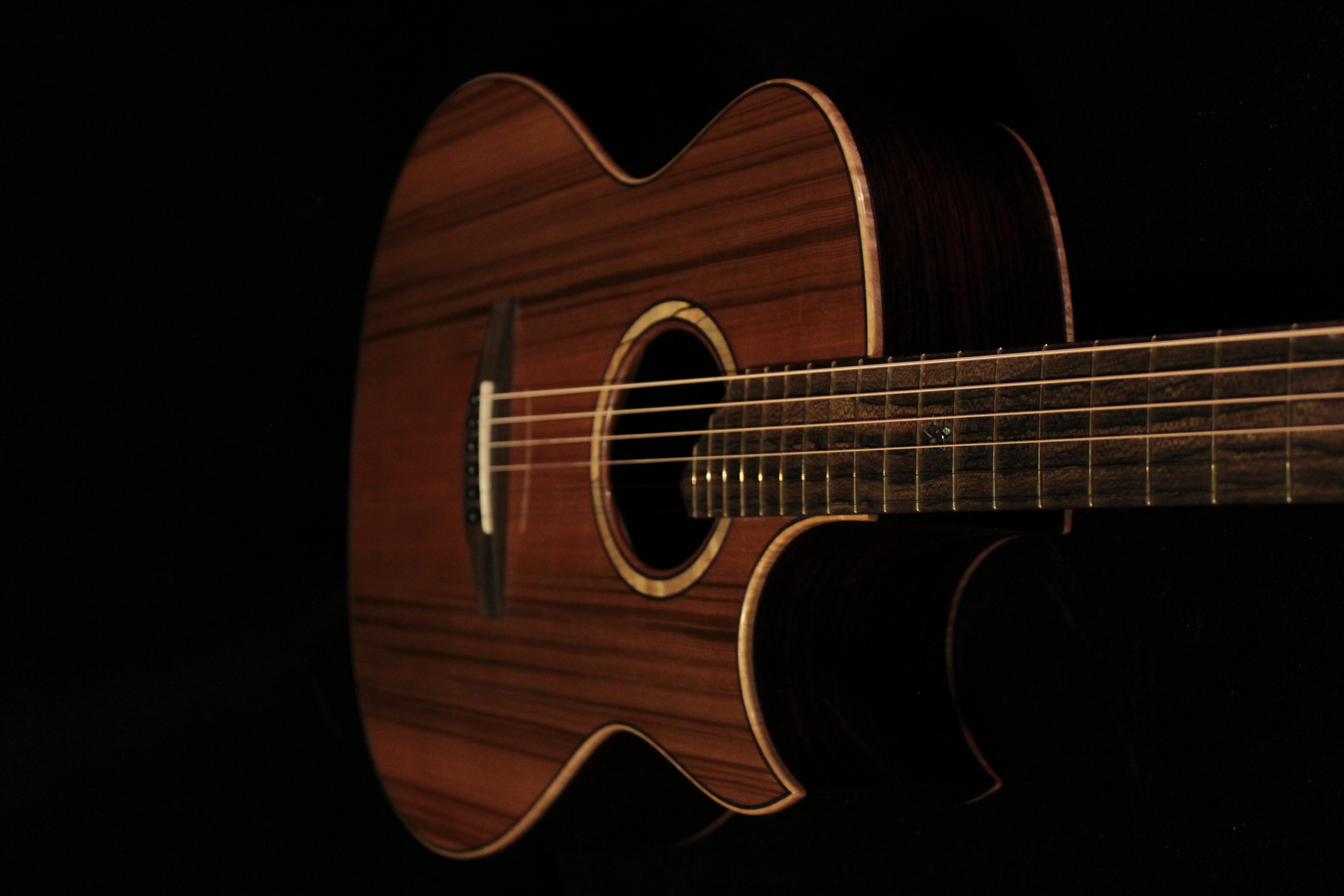 House Custom Guitars