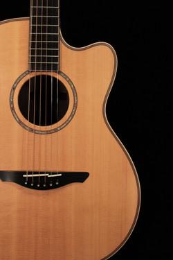 Avalon Guitars Pioneer S2-20C
