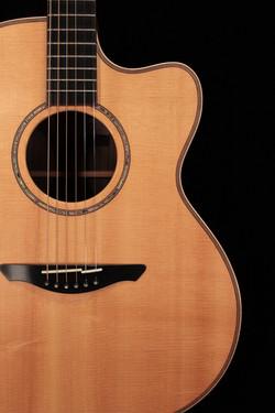 Avalon Guitars A2-20C Model