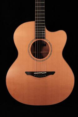 Avalon Guitars Pioneer A1-10C
