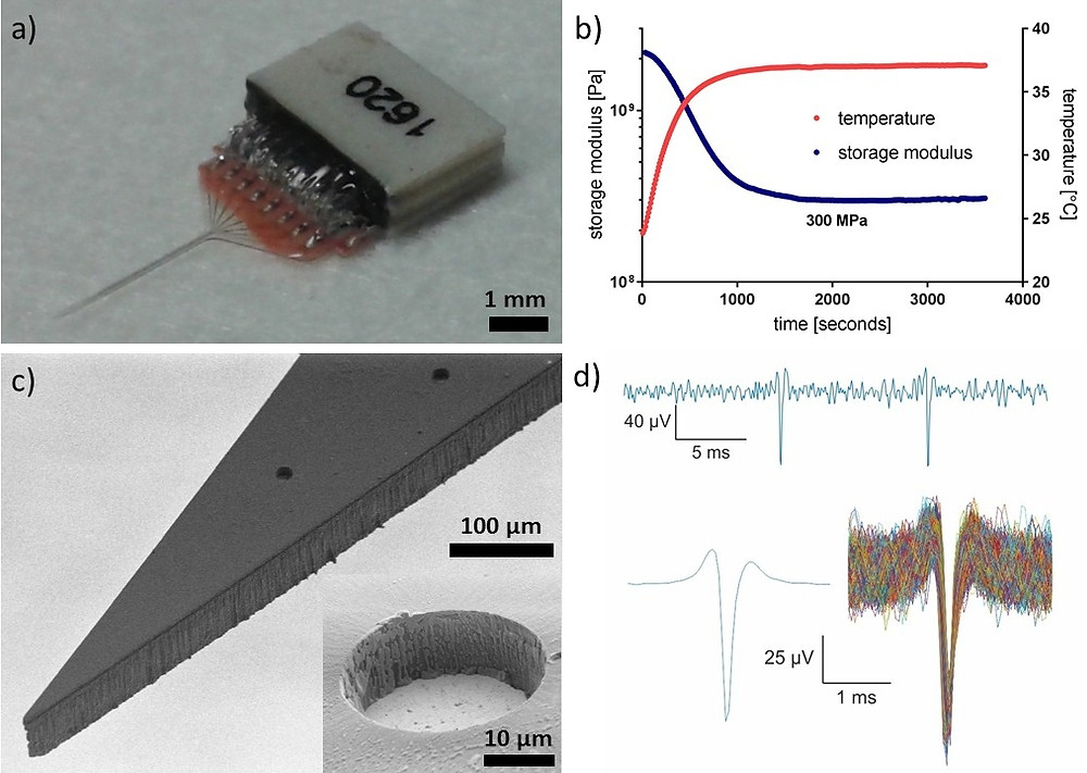 polymer neural microelectrode