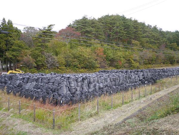 Sacs noirs de déchets radioactifs, Tohok