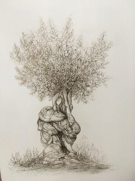L'arbre aux bêtes ©Raffi Kaiser, 2019.JP