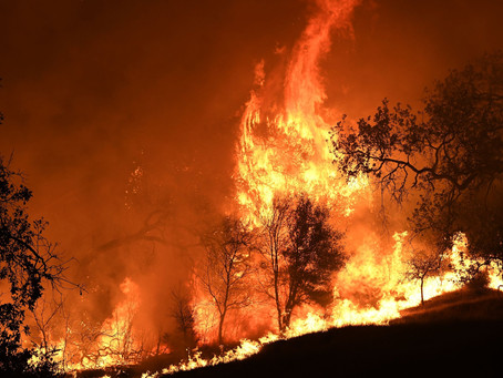 Woosley Fire: What to do if my homeowner's insurance coverage is dropped?