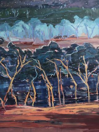 7. untitled_oil on polyester_167 x 198cm (wynne entry).JPG
