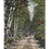 Thumbnail: Framed Postcard of Bethlehem, NH