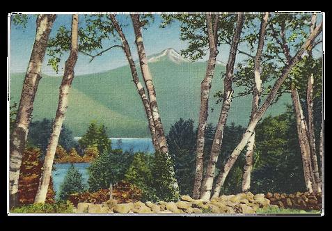 Framed Postcard of Chocorua, NH