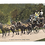 Thumbnail: Framed Postcard: White Mountain Stage Coach, NH
