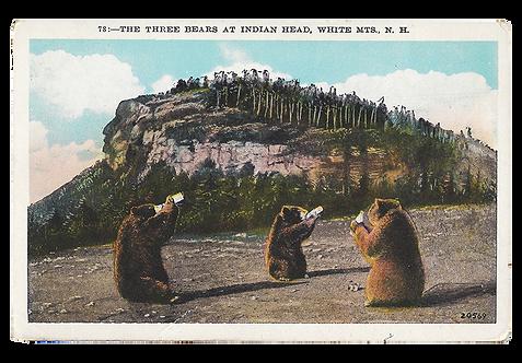 Framed Postcard: Bears at Indian Head, NH