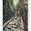 Thumbnail: Framed Postcard of The Flume, NH