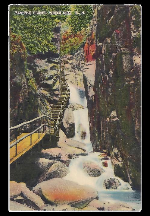 Framed Postcard of The Flume, NH