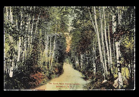 Framed Postcard: Birch Road, Bethlehem, NH