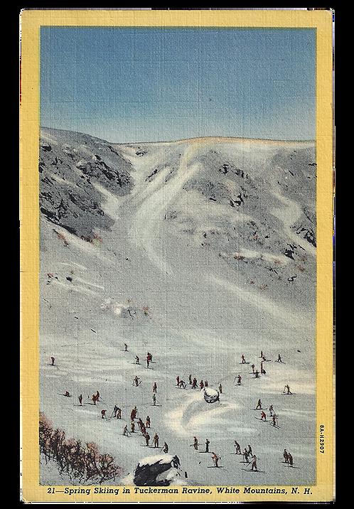 Framed Postcard: Spring Ski, Tuckerman Ravine, NH