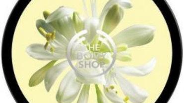The Body Shop Body Shop Body Butter Moringa
