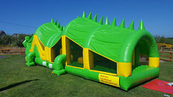 Crocodile Sligo Bouncy Castles Hire