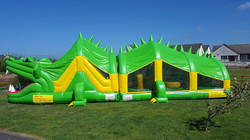 8005Crocodile Sligo Bouncy Castles H