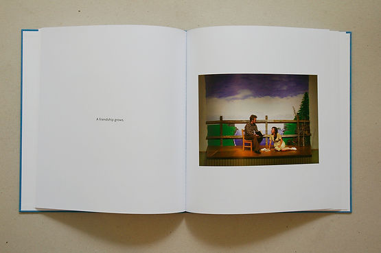 Joe Duggan, Life is not enough, Irish artist, art book