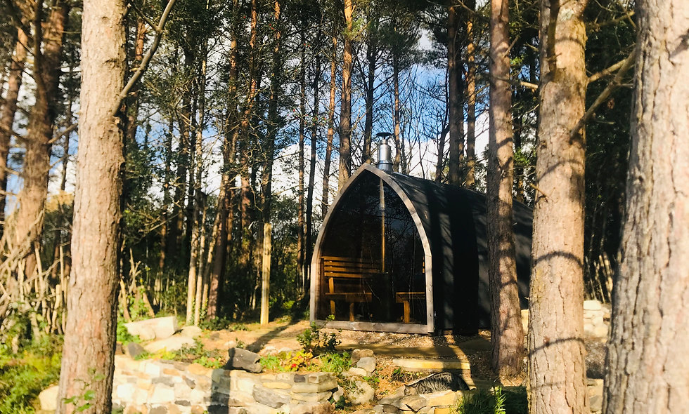 *Winter Edition* Forest Eco Spa