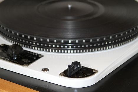 Garrard 301 platter damping rings