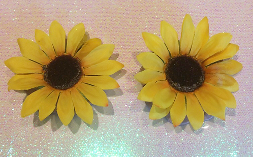 Sunflower Pasties