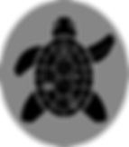 cj_tortoiseman_finalOval.png