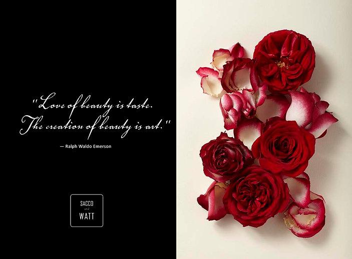 SW_valentine_final.jpg