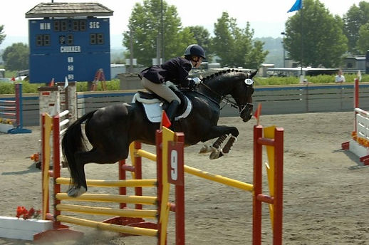 Dr. Chelsea show jumping