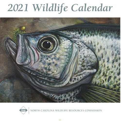 Wildlife in North Carolina 2021 Calendar