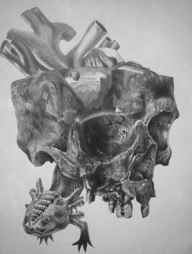 Extincion y Olvido