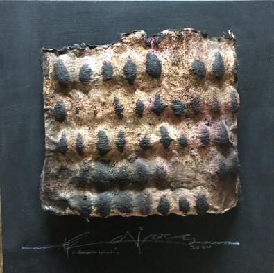 Carcasa de algodón trenzado.3