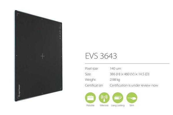 11EVS3643.JPG