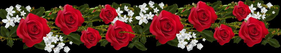 roses-22.png
