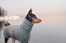 Wool & Fleece Coat Soft GReen/Grey
