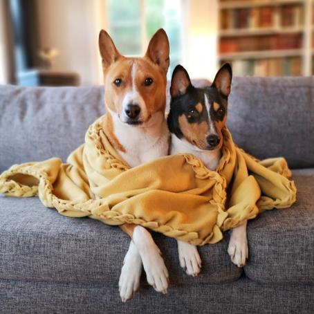 Big Braided Blanket