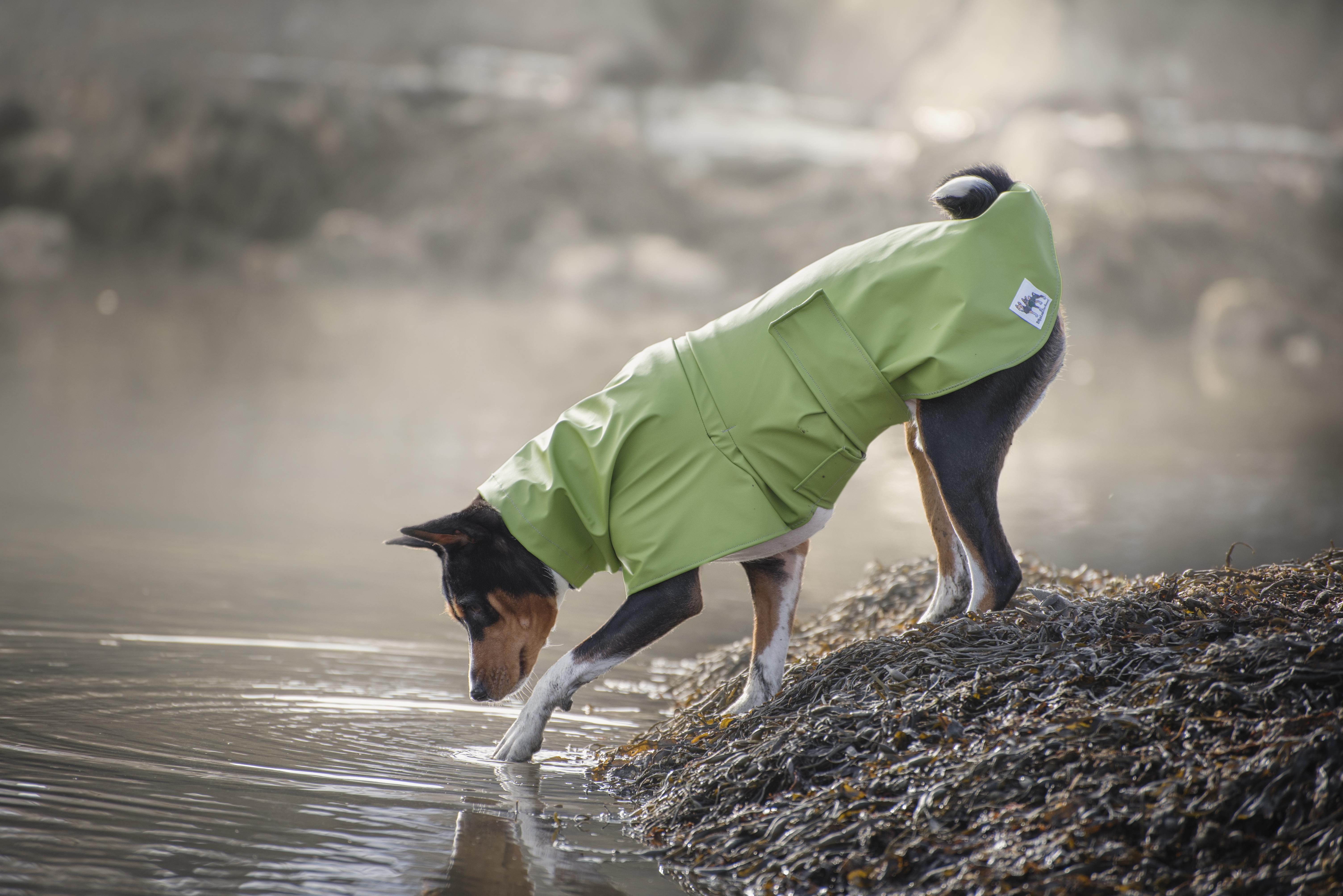 Rain Coat Green