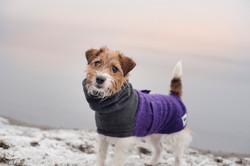 Wool & Fleece Coat Charcoal/Purple