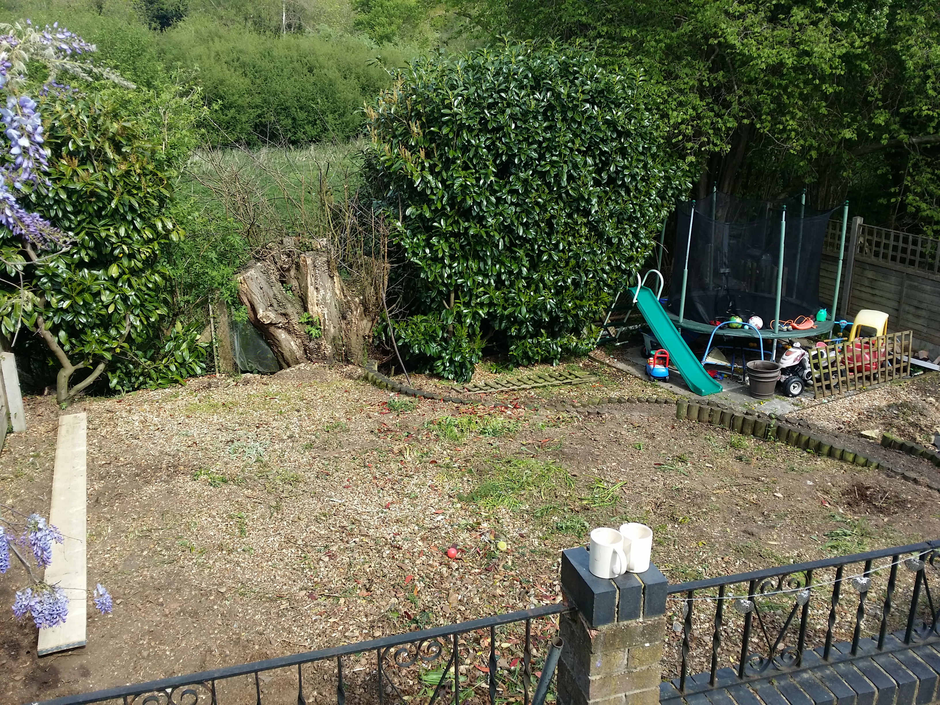 All shrubs removed