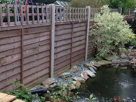 Fencing, Ponds, AP Solutions