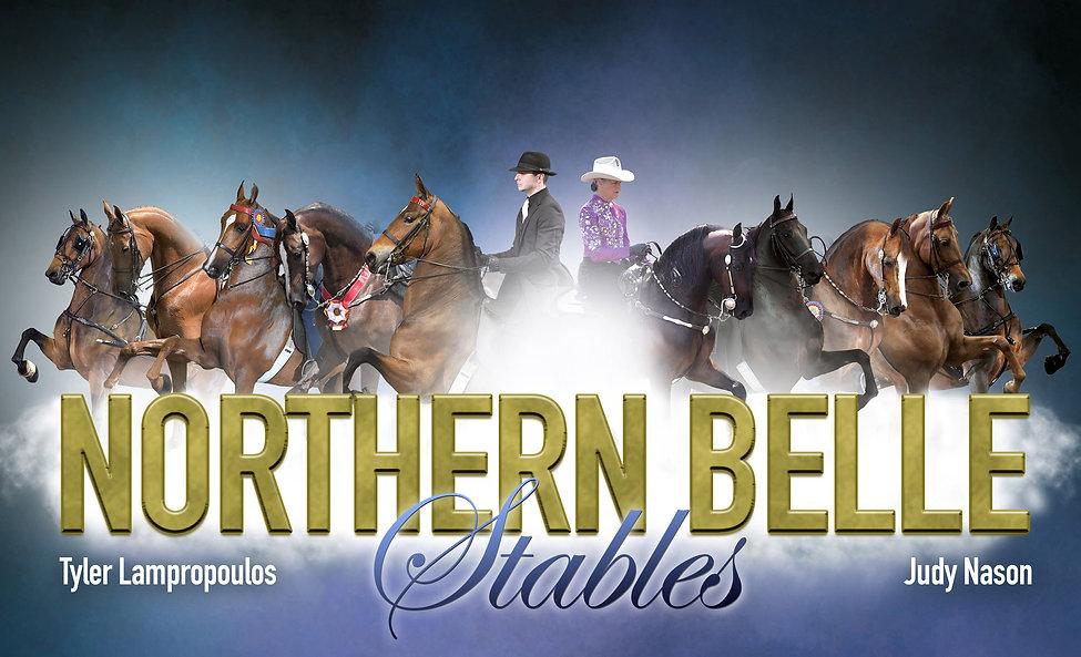 horses, ponies, horseback riding lessons