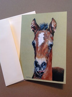 Baby Horse Filly Note Cards