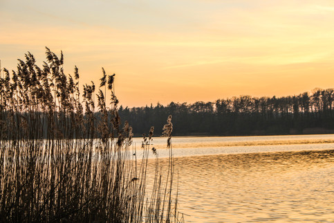 Bordesholmer See (8 von 8).jpg