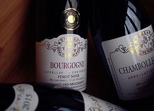 Domaine Mongeard-Mugerert Bourgogne.jpeg