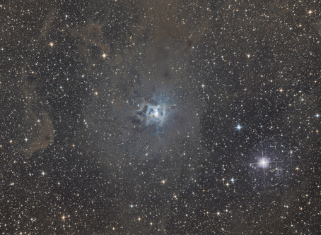 NGC 7023 - The Iris Nebula from a Bortle 2 zone