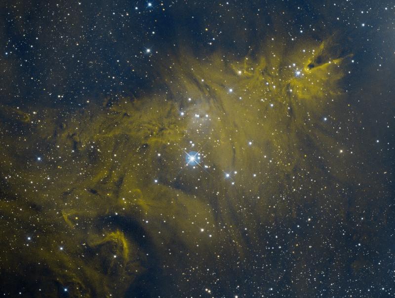 NGC 2264 the Christmas Tree Astrophotography