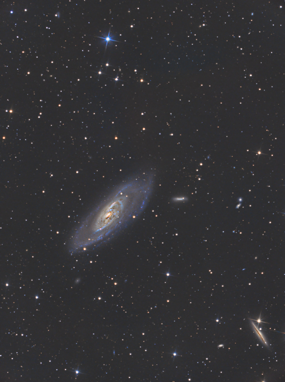 """Astrophotography of Messier 106, an intermediate spiral galaxy in the constellation of Canes Venatici. Captured with an ASI 1600MM camera, ASIair, and Orion 8"""" Astrograph telescope"""