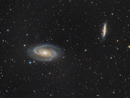 M81 & M82 - LA GALAXIE DE BODE ET LA GALAXIE DU CIGARE