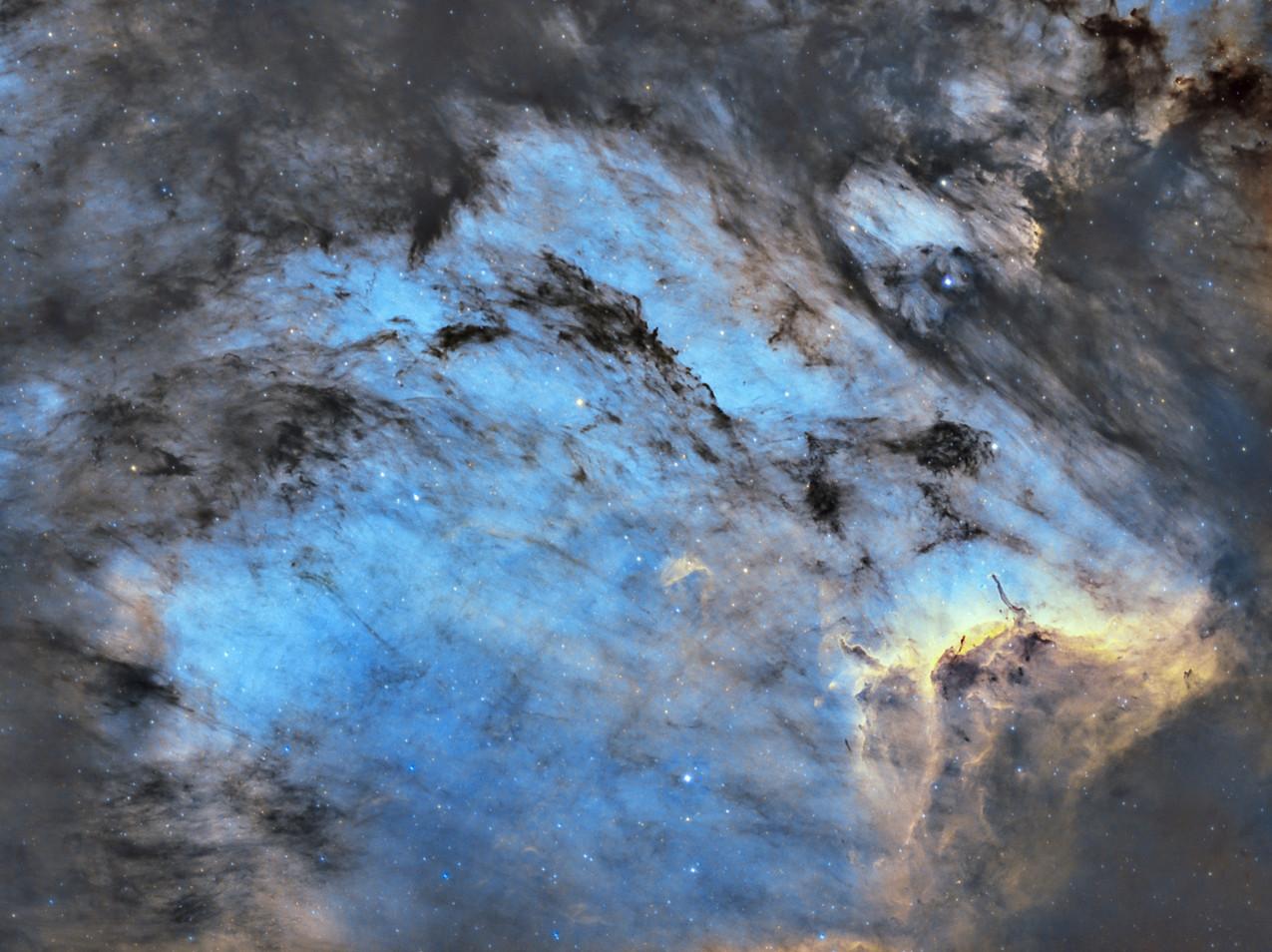 The Pelican Nebula Astrophotography