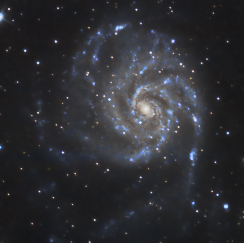 Cropped Version of M101