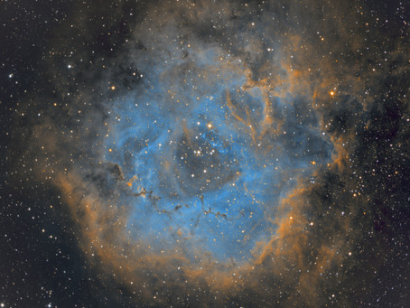 NGC 2244 - The Rosette Nebula taken With a $4,800 telescope